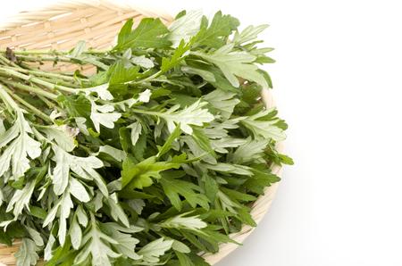 Fresh green mugwort leaves in a flat basket on a white background.