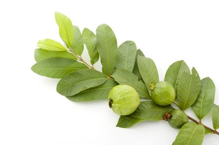guava Banque d'images