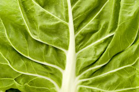 Green Swiss chard closeup Stock Photo