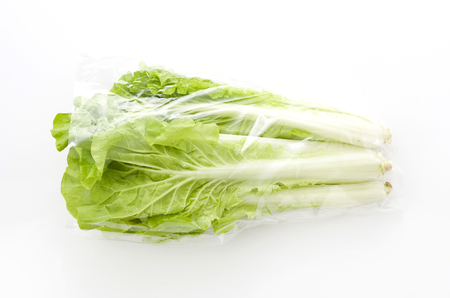 Shantung vegetables, a genus of Chinese cabbage called 'santou-na'