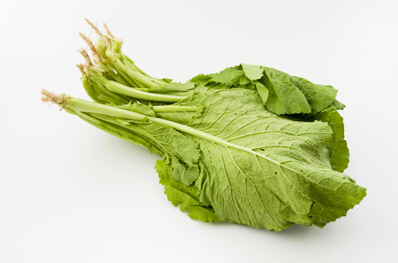 hojas de mostaza frescas fondo blanco