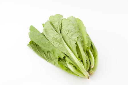 fresh Mustard greens White Background 版權商用圖片 - 103424491