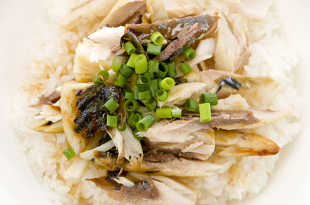 Japanese food, Shiosaba no hogushimidonburi, salt-grilled mackerel meat flakes bowl Banco de Imagens