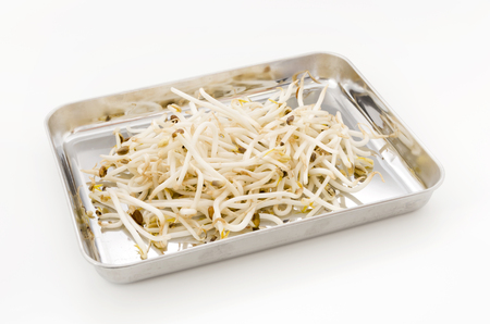 Bean sprouts on stainless steel tray on white background.