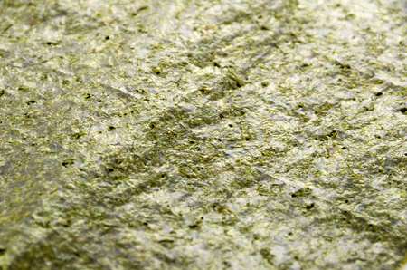 dried laver seaweed background