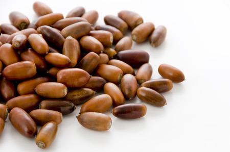 acorns on white background Фото со стока