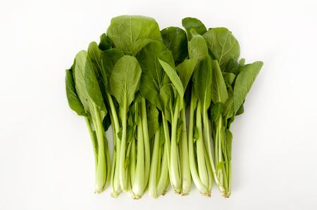 Komatsuna, Japanese Mustard Spinach 免版税图像