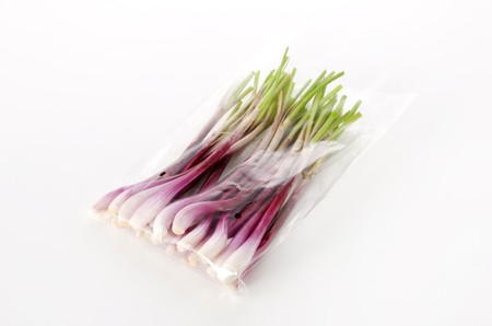 Shallots Koshino Red 写真素材