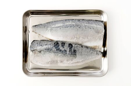 Frozen mackerel fillet on Stainless steel tray 스톡 콘텐츠