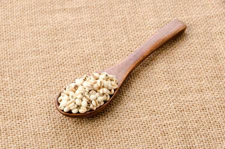 Job's tears( Adlay millet) in wooden spoon over burlap background