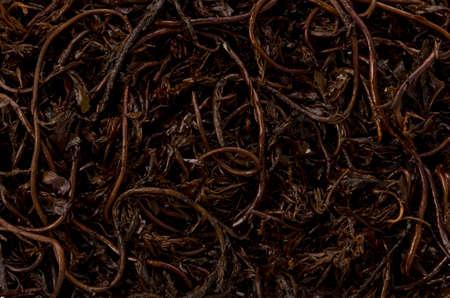 Hijiki seaweed background or texture