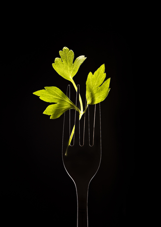 Fork with parsley on a black background.