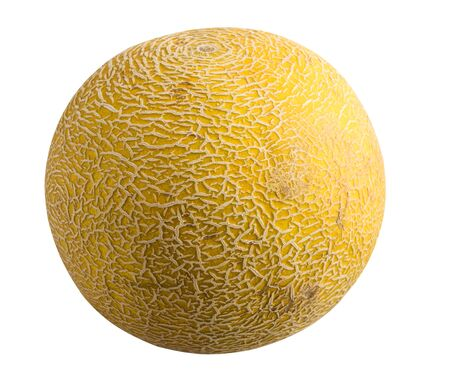 Fruit isolated on a white background. Melon
