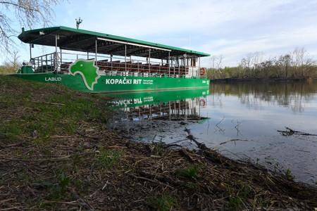 Kopački rit Swamp Baranja Baranya Slavonija Slavonia Osijek Park Nature Natural Stock Photo - 104041921