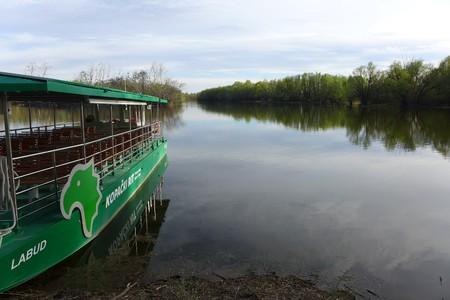 Kopački rit Swamp Baranja Baranya Slavonija Slavonia Osijek Park Nature Natural