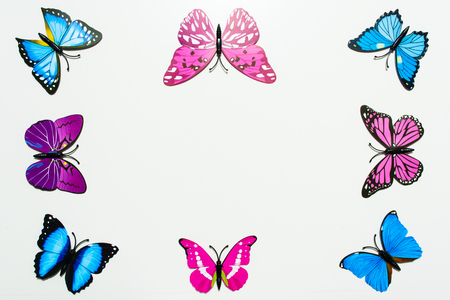 Blue And Pink Butterfly Frame Decoration On White Background.. Stock ...
