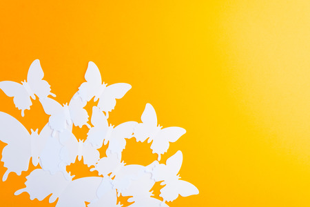 White butterfly over orange paper background with copy space