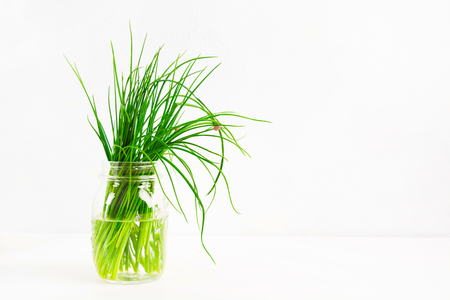 Fresh green onion in the glass jar on white background with copy space, selective focus
