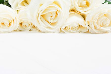 Beautiful holiday white roses on white background with copy space. Card for wedding or valentines day. Mockup for jewellery or spa design. Selective focus
