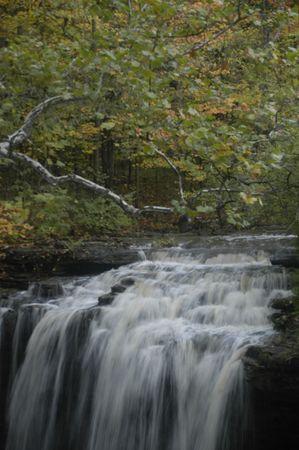 Top of the falls 版權商用圖片