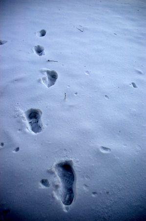 Snowy footprints Stock Photo - 784603