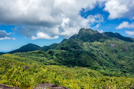 morne: Morne Seychellois National Park in Mahe Seychelles main island