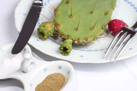Cactus on plate with knife and fork, unhealthy eating concept Stock Photo
