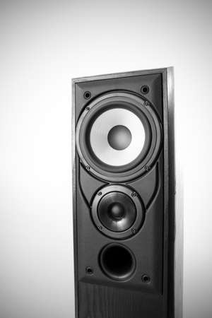 Single black floor loudspeaker