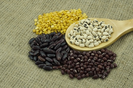 The various sorted dry Legumes good for health in different colors. photo