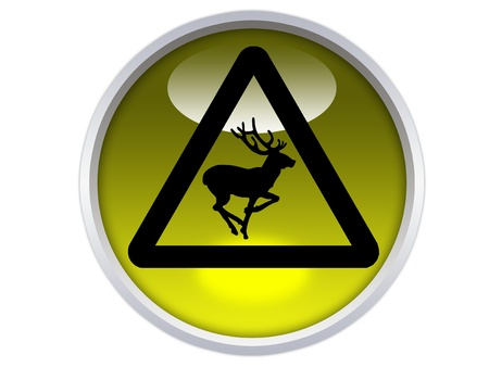 wild animals ahead symbol on yellow glossy signage isolated over white background