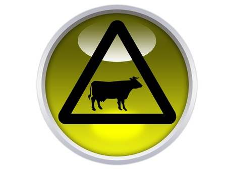 cattle crossing ahead symbol on yellow glossy signage isolated over white background