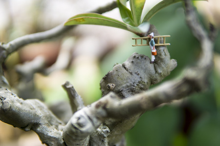 Miniature figures painting - painter in action on the tree concept Stock Photo