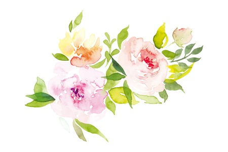rose: Watercolor greeting card flowers. Watercolor greeting card flowers. Handmade. Congratulations. Illustration