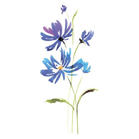 feitas à mão: Aguarela cartão flores. Handmade. Parabéns. Ilustração