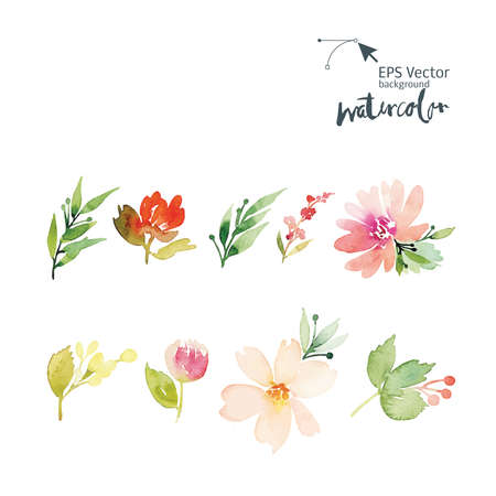 flower borders: Watercolor greeting card flowers. Handmade. Congratulations.