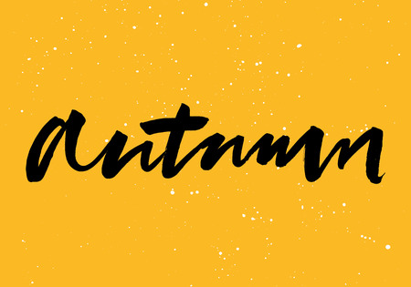Autumn calligraphy. Hand lettering. Brush ink. Illustration