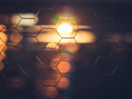 iluminado a contraluz: El hermoso sol de la mañana brilla a través de una valla de alambre de pollo al amanecer la creación de la luz de fondo. Lugar: Lund, Suecia Scania Skåne. La belleza natural de la ciudad.
