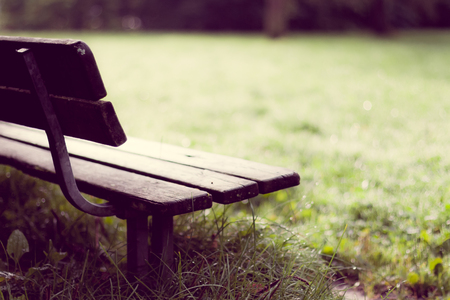 sweden resting: After rainfall, an empty wooden bench stands alone on the wet grass thats filled with raindrops.