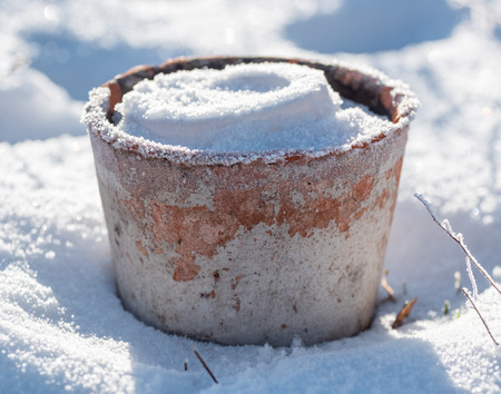 filled out: A flowerpot made out of earthenware is filled with snow and frost in the winter. Location: Sweden.