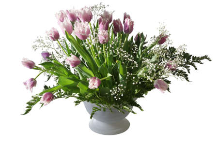 glass vase: Tulips Bouquet in a Vase Isolated