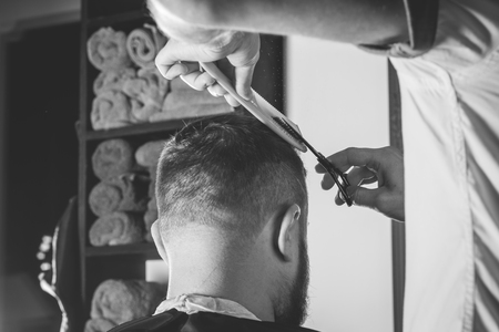 barbershop: Serious Bearded Man Getting Haircut By Barber While Sitting In Chair At Barbershop. Barbershop Theme