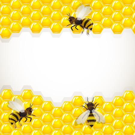 Nahaufnahme der Arbeitsgruppe Bienen auf honeycells Standard-Bild - 23111716