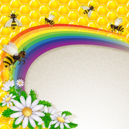 Daisy flower and bee over rainbow and honeycombs