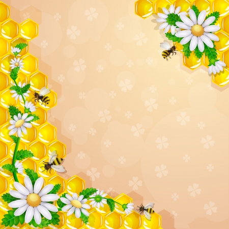 Daisy flower and bee over honeycombs Illustration