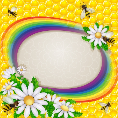 Daisy flower and bee over the honeycombs and rainbow background  Illustration