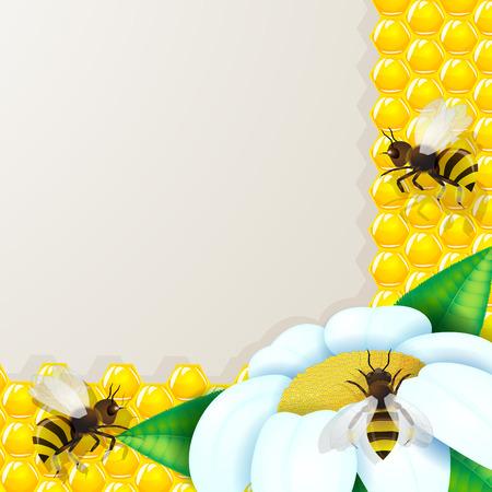 golden daisy: Abejas con flores sobre fondo de nido de abeja