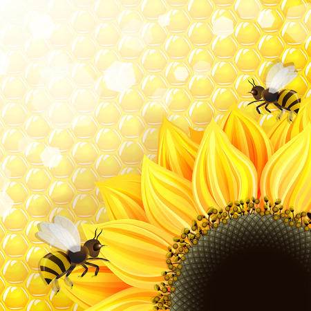 Sunflowers and bees over honeycombs