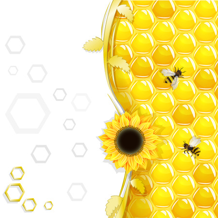 Sunflowers and bees over honeycombs background Illustration
