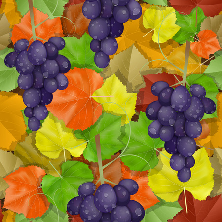Autumn leaves pattern with grapes Vector