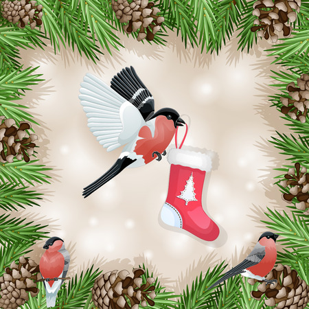bullfinch: Pine cone with branch and bullfinch with socks